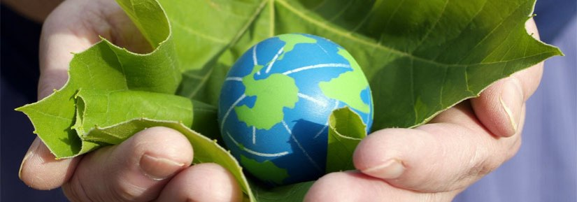 social_good-hands-earth-leaves